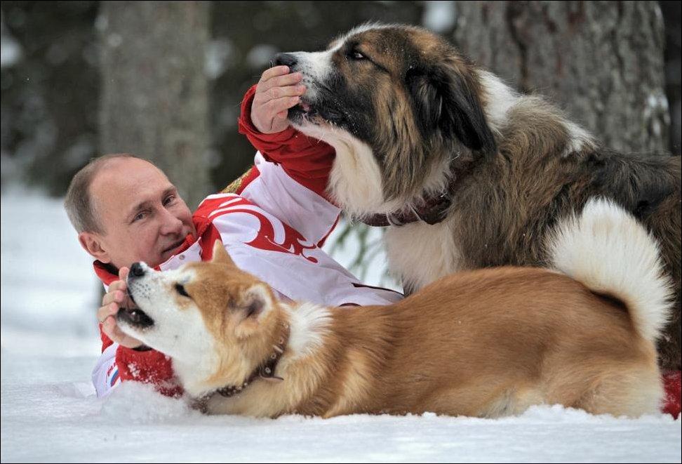 www.gladiators-chess.ru/images/putin-with-dogs-005.jpg